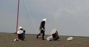 Thợ chống dột tại bình dương - Nhận sửa chữa nhà chuyên nghiệp - Đội thợ làm việc tận tình,chu đáo